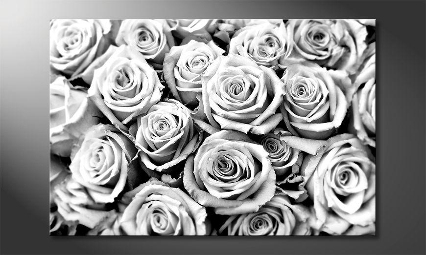 Decoración moderna Creamy Roses
