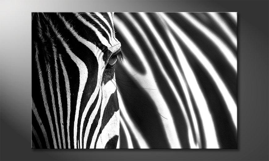 El cuadro Animal Stripes