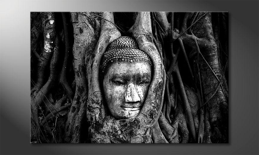 El cuadro Deep Rooted