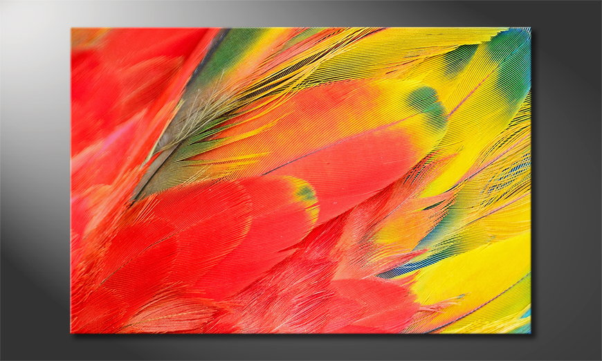 El cuadro Parrot Feathers