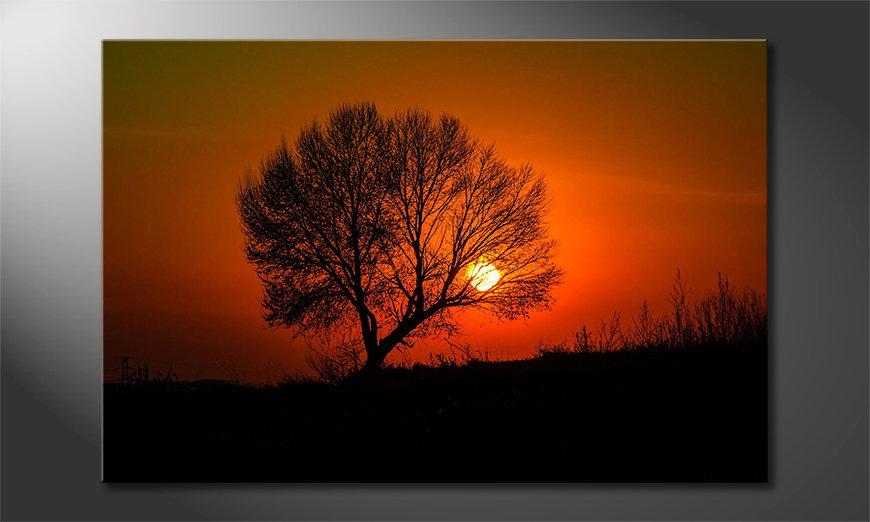 El cuadro impreso Red Sunset