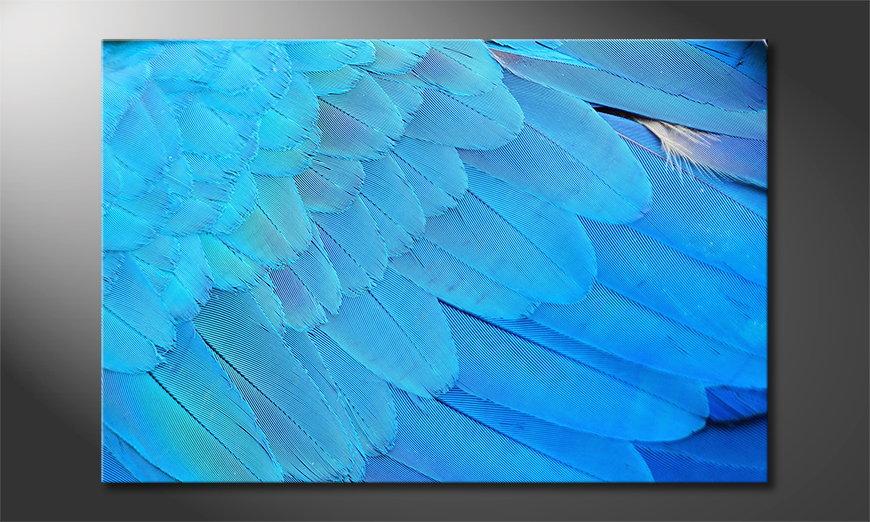 El cuadro moderno Bird Feathers