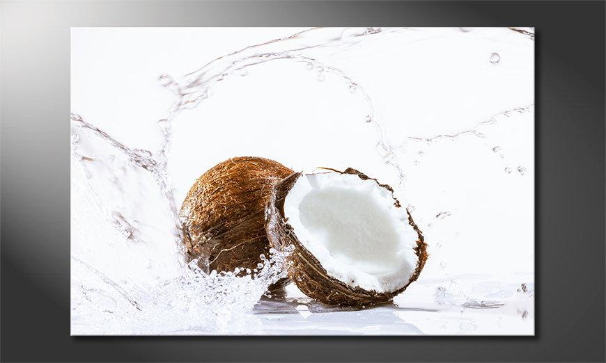 El cuadro moderno Coconut