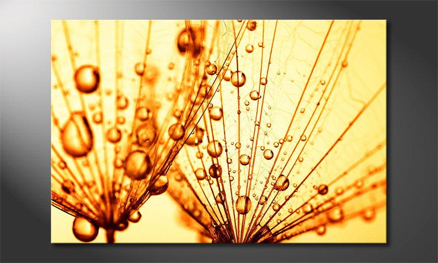 El cuadro moderno Dandelion Closeup