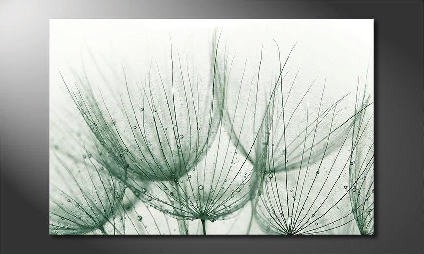 El cuadro moderno Dandelion Detail