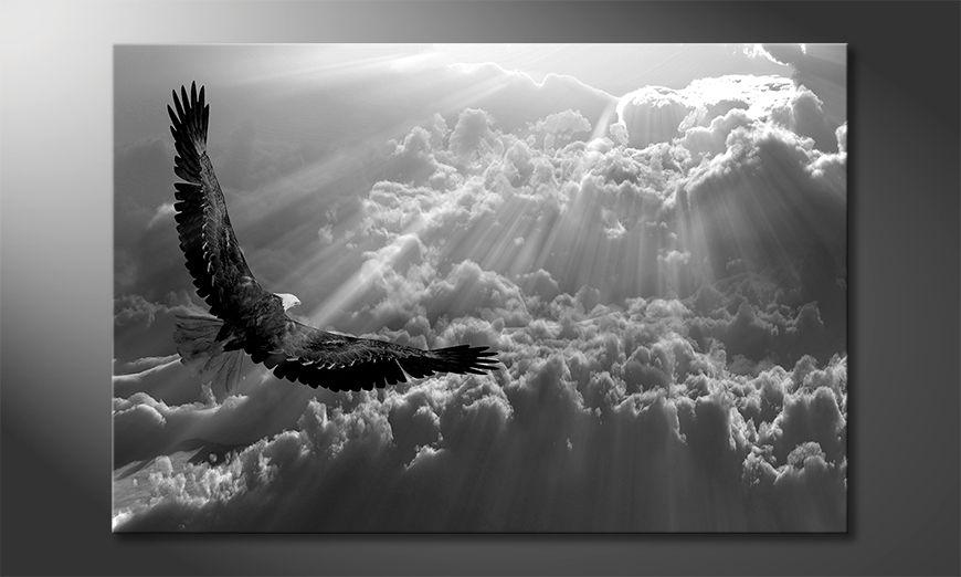 El cuadro moderno Eagle In Flight