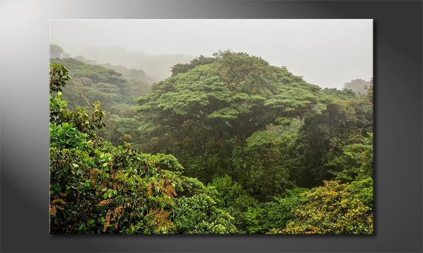 El cuadro moderno Jungle