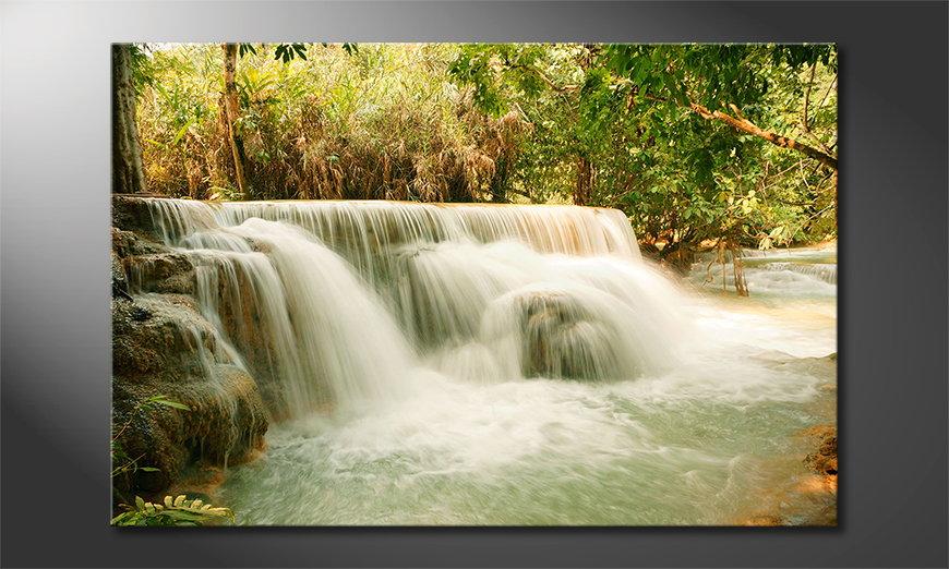 El cuadro moderno Jungle Waterfall