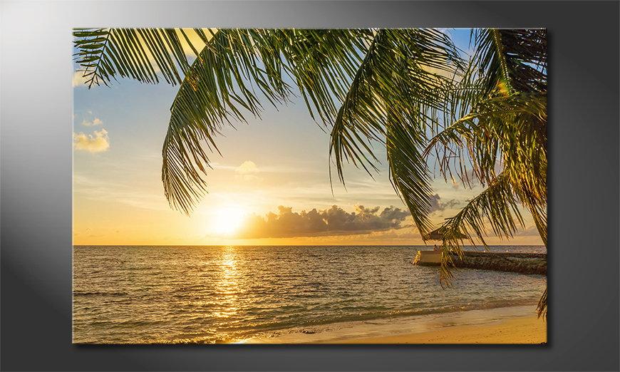 El cuadro moderno Maledives