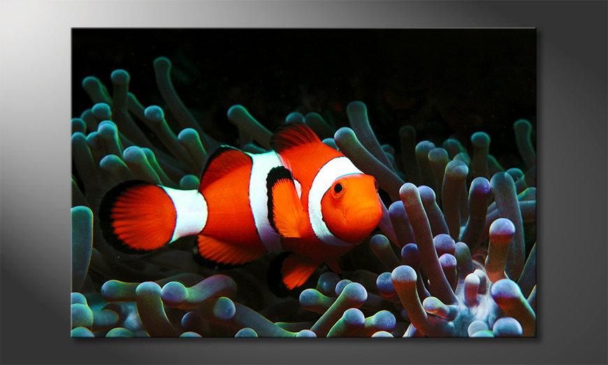 El cuadro moderno Nemo