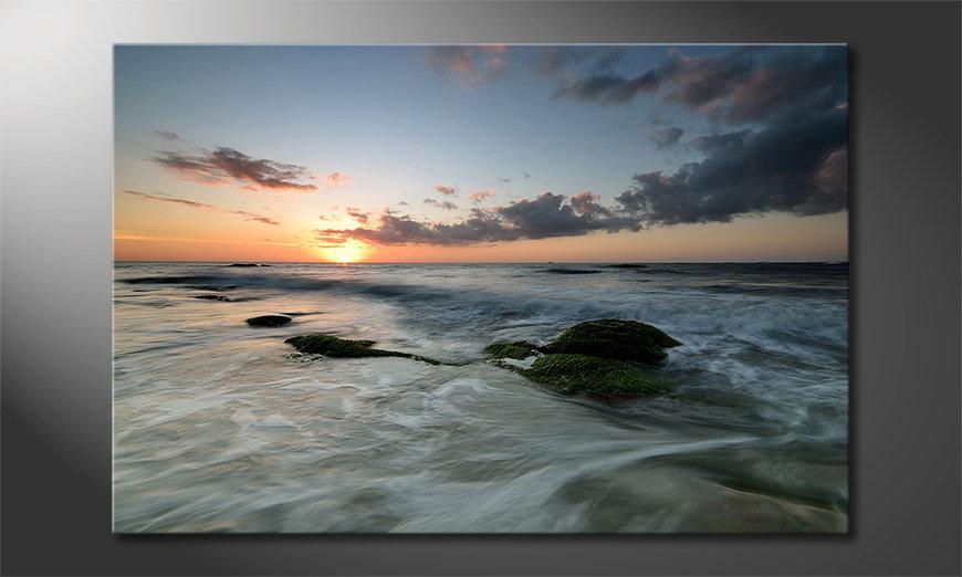 El cuadro moderno Ocean Sunset
