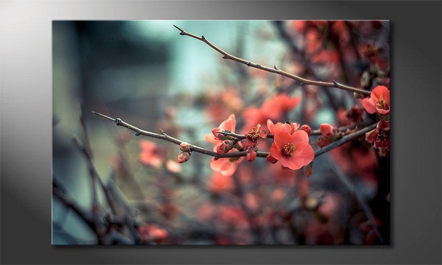 El cuadro moderno Red Blossoms