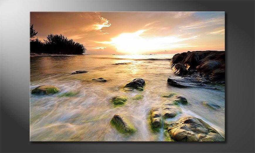 El cuadro moderno Stoned Sunset