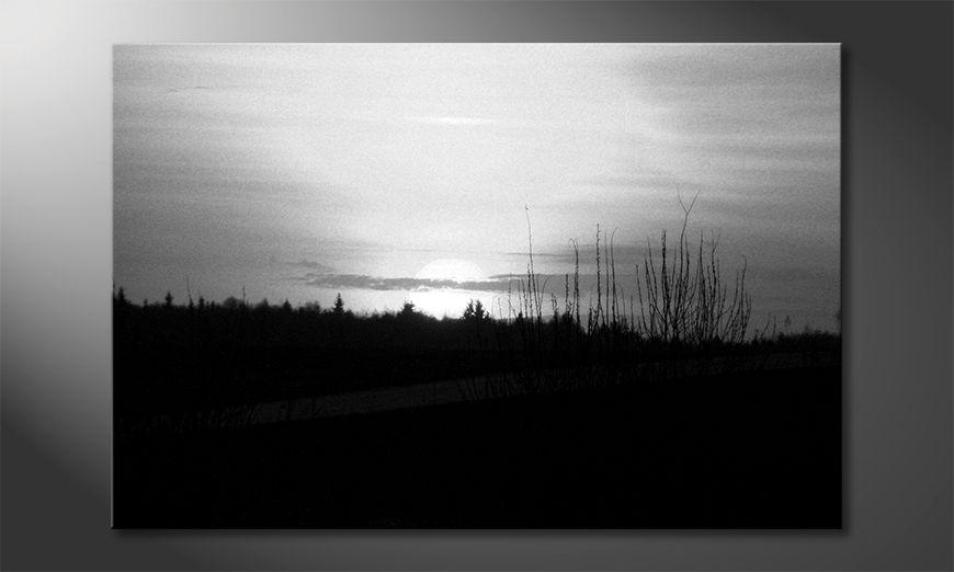 El cuadro moderno Sunset Sky