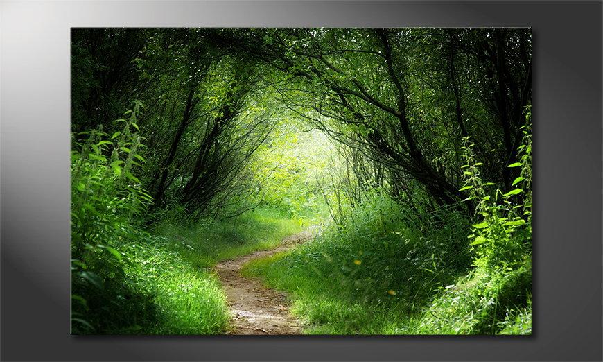 El cuadro moderno Way into the Forest