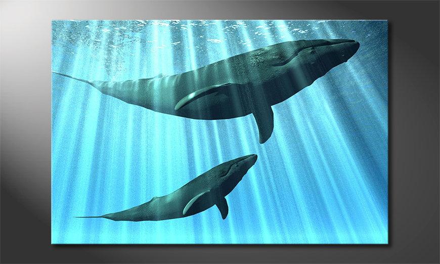 El cuadro moderno Whales