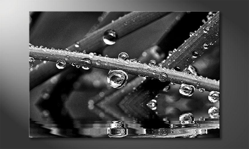 Impresión de la lona Water Drops