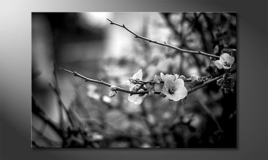 La bonita pintura Beautiful Blossoms