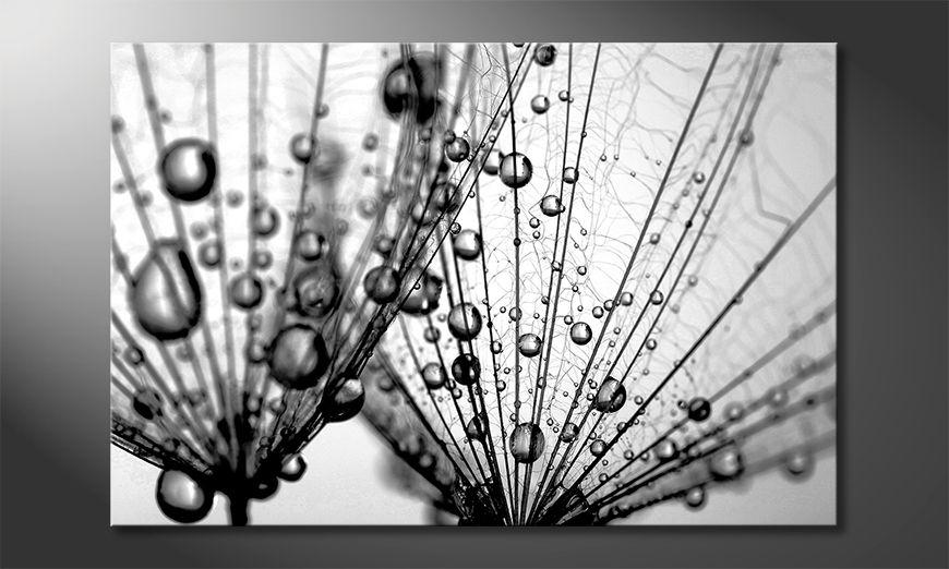 La bonita pintura Dandelion Seed