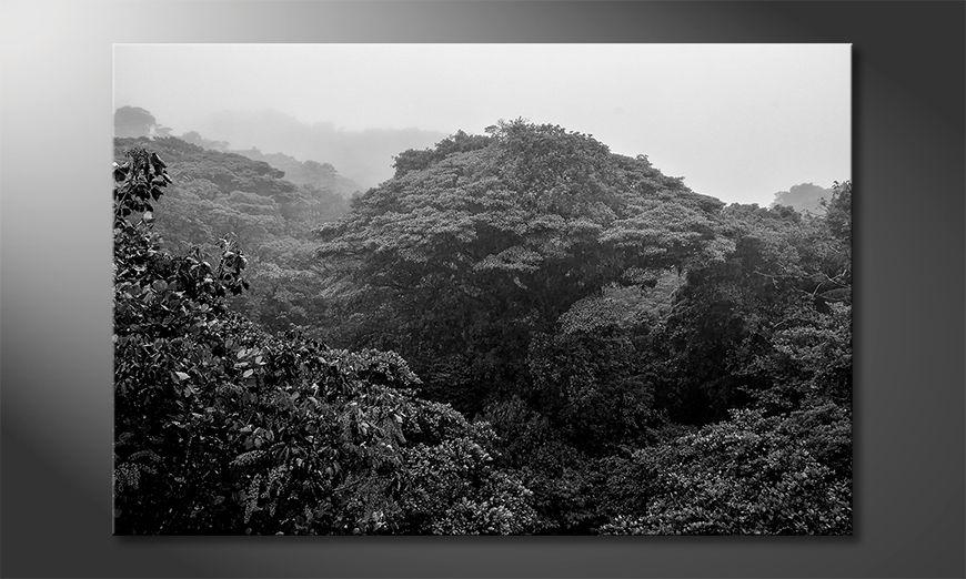 La cuadro impresa Jungle